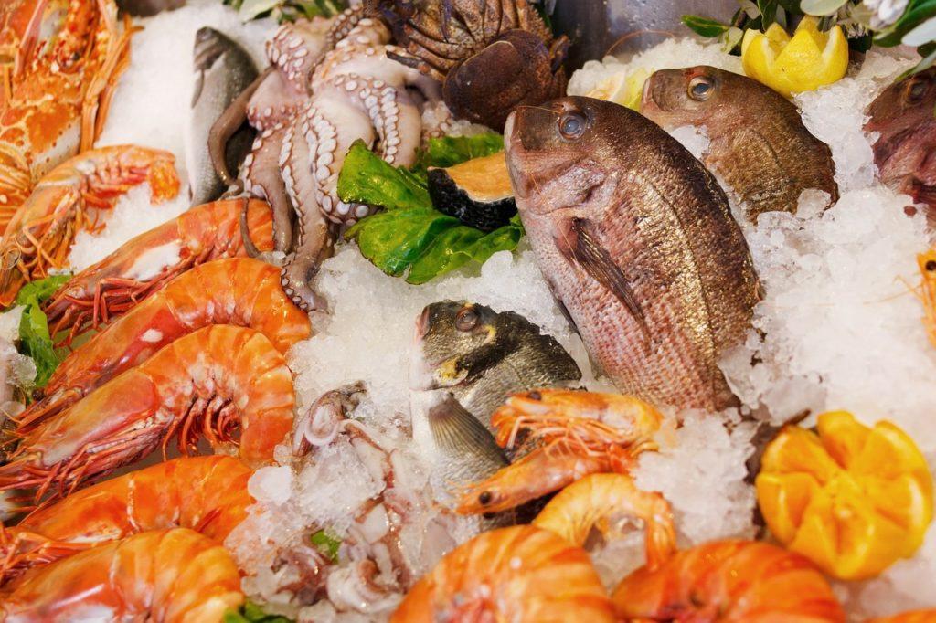seafood fish shrimp octopus